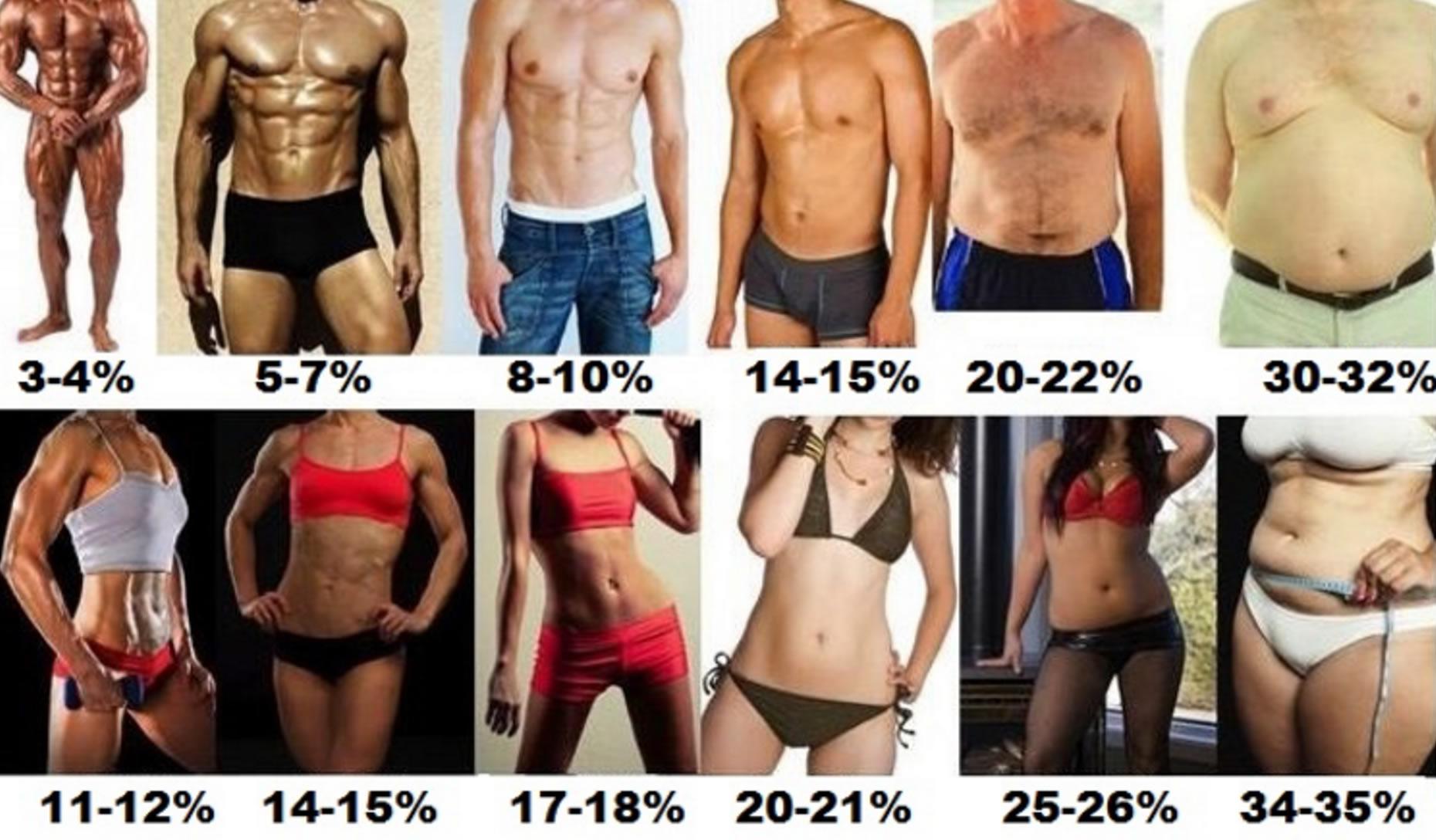 онлайн тест определение процента жира в организме